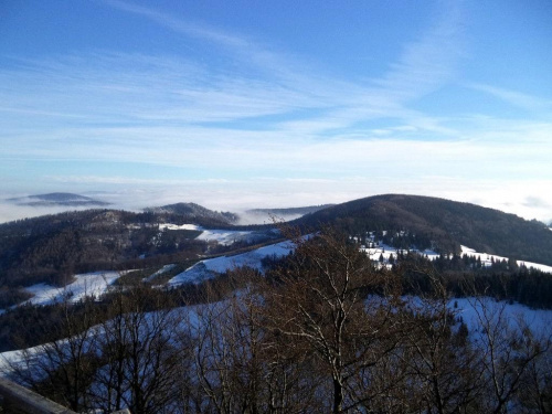 Smerekowa z Wysokiej #góry #pieniny #homole #wysoka #durbaszka
