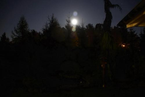Najserdeczniej życzę rodzinnych i pogodnych Świąt Wielkiej Nocy.Cieszmy się sobą #noc #księżyc #ogród