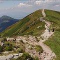 w stronę Rakonia #góry #Lipiec2013 #Tatry #TatryZachodnie