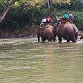 #azja #tajlandia #rzeka #tropik #dżungla