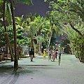 Wieczorny spacer po Pattaya #azja #pattaya #tajlandia