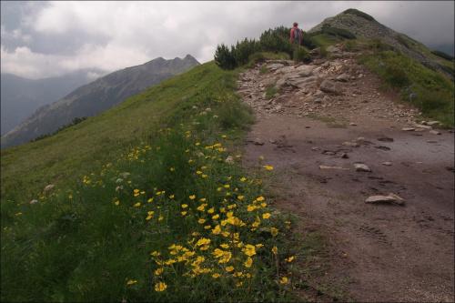 https://www.youtube.com/watch?v=PWzmVEn0M3U #góry #Lipiec2014 #Ornak #Tatry #TatryZachodnie