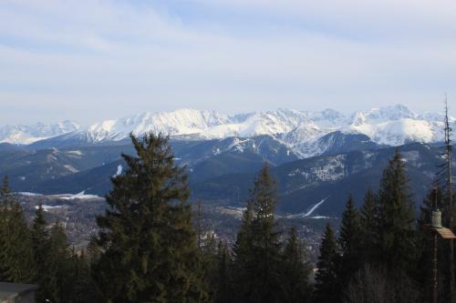 Widoki z Gubałówki #góry #Tatry #Zakopane