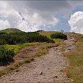 Tatry Zachodnie- w drodze na Trzydniowiański Wierch #góry #Lipiec2013 #Tatry #TatryZachodnie #TrzydniowiańskiWierch