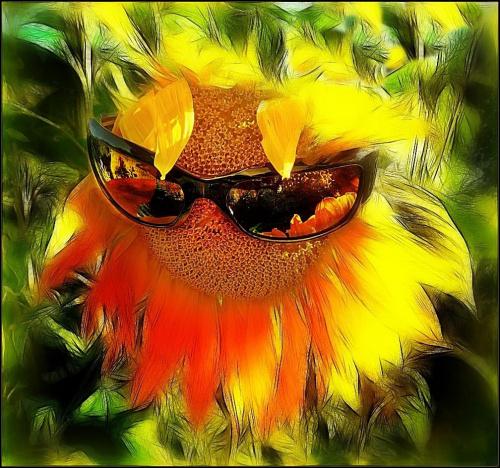 na deszczowe dni #kwiaty #słoneczniki #fraktale