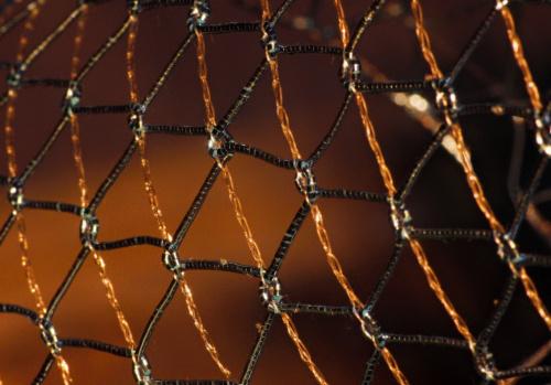 A�urowa wst��ka