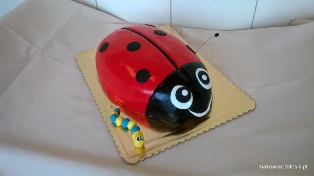 Tort biedronka z robaczkiem #biedronka #torty #dla #dzieci #owad #torty #okazjonalne #torty #tort